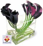 wedding flowers florist- Calla Lilies